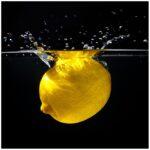 Küchen Glasbilder Glasbild Zitrone Im Wasser Frisches Obst Fr Kche 50 Küche Bad Regal Wohnzimmer Küchen Glasbilder