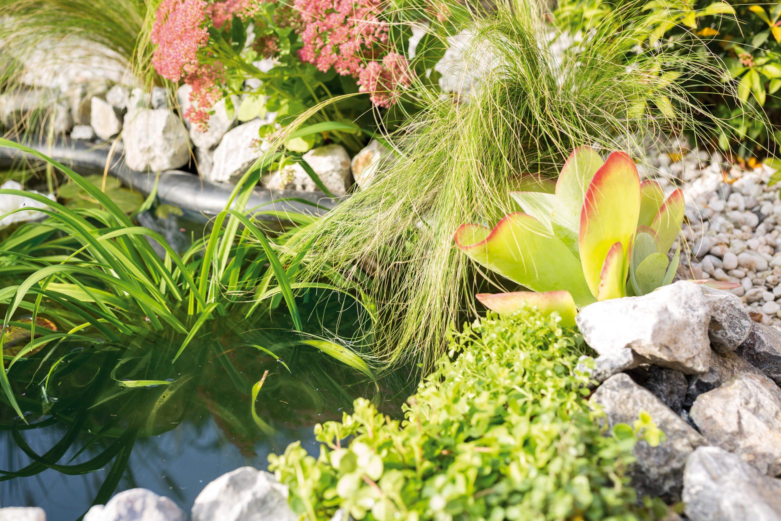 Full Size of Solar Springbrunnen Obi Brunnen Einbauküche Nobilia Fenster Küche Mobile Immobilienmakler Baden Regale Immobilien Bad Homburg Wohnzimmer Solar Springbrunnen Obi
