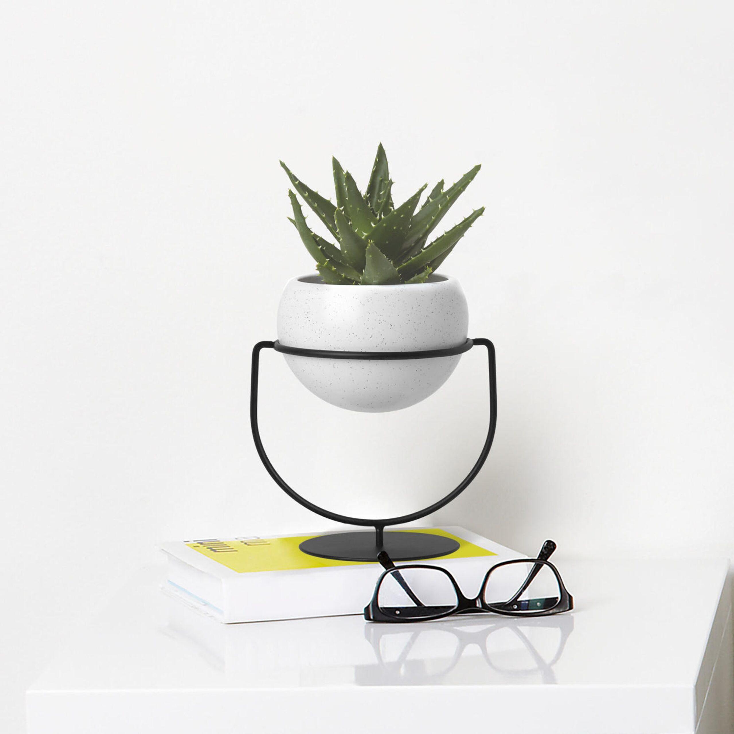Full Size of Kräutertopf Keramik Umbra Nesta Pflanzenhalter Küche Waschbecken Wohnzimmer Kräutertopf Keramik