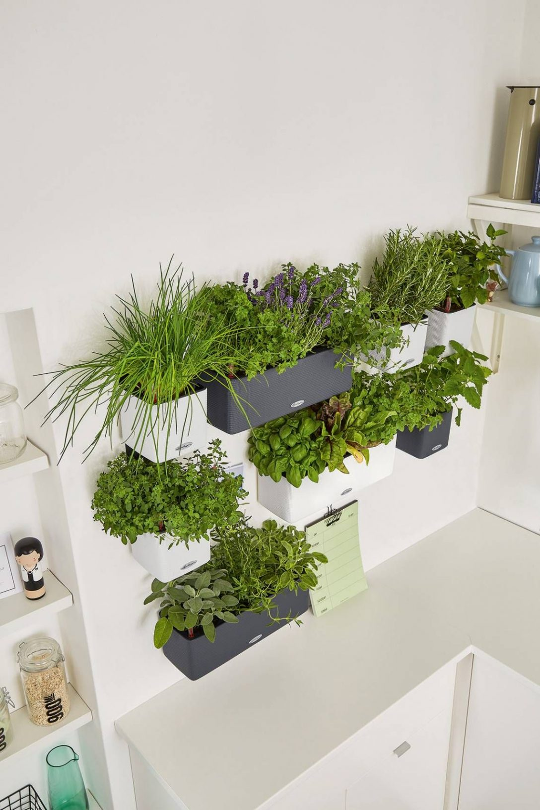 Large Size of Kräutertöpfe Krutertpfe Von Lechuza Cube 14 Colortriple Green Wall Pflanzen Wohnzimmer Kräutertöpfe
