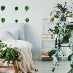 Schlafzimmer Tapeten 2020 Wohntrend Urban Jungle So Bringt Ihr Tropenflair In Eure Wohnung Komplette Schimmel Im Fototapeten Wohnzimmer Schranksysteme Komplett Wohnzimmer Schlafzimmer Tapeten 2020