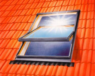 Fliegengitter Obi Wohnzimmer Tesa Fliegengitter Dachfenster Mit Sonnenschutz 140 Cm 120 Mobile Küche Fenster Immobilien Bad Homburg Maßanfertigung Nobilia Obi Einbauküche Für