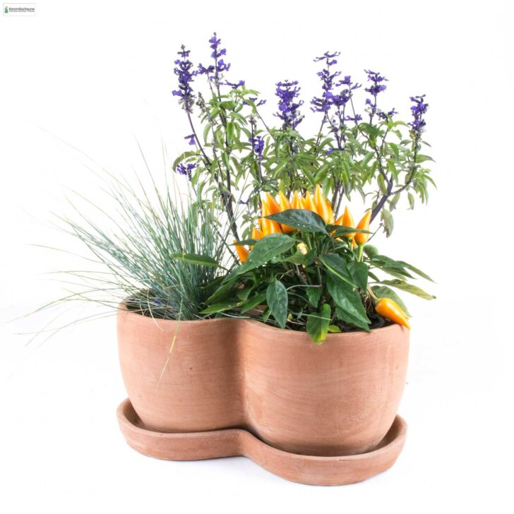 Medium Size of Kräutertopf Keramik Krutertopf Mit Untersetzer Jetzt Kaufen Onlineshop Küche Waschbecken Wohnzimmer Kräutertopf Keramik