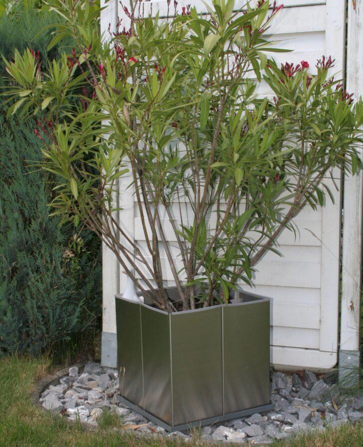 Medium Size of Garten Im Quadrat Edelstahl Pflanzgef Cubus Mit Rollen Outdoor Küche Edelstahlküche Gebraucht Hochbeet Wohnzimmer Hochbeet Edelstahl