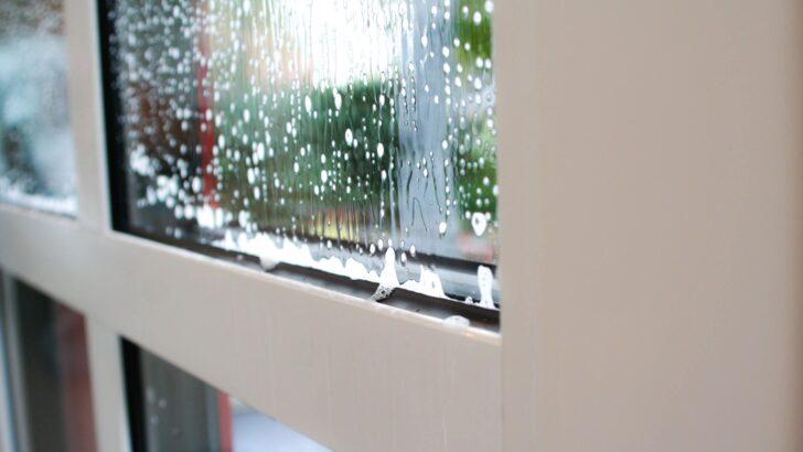 Medium Size of Teleskopstange Fenster Putzen Blizz Ihre Fensterputzer Heiner Mller Ek Einbruchsichere Klebefolie Maße Sichtschutzfolie Für Tauschen Fliegennetz Sichtschutz Wohnzimmer Teleskopstange Fenster Putzen