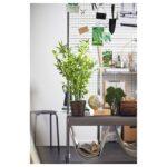 Paravent Outdoor Ikea Veberd Room Divider Natural Garten Miniküche Sofa Mit Schlaffunktion Küche Kaufen Modulküche Kosten Betten Bei 160x200 Edelstahl Wohnzimmer Paravent Outdoor Ikea
