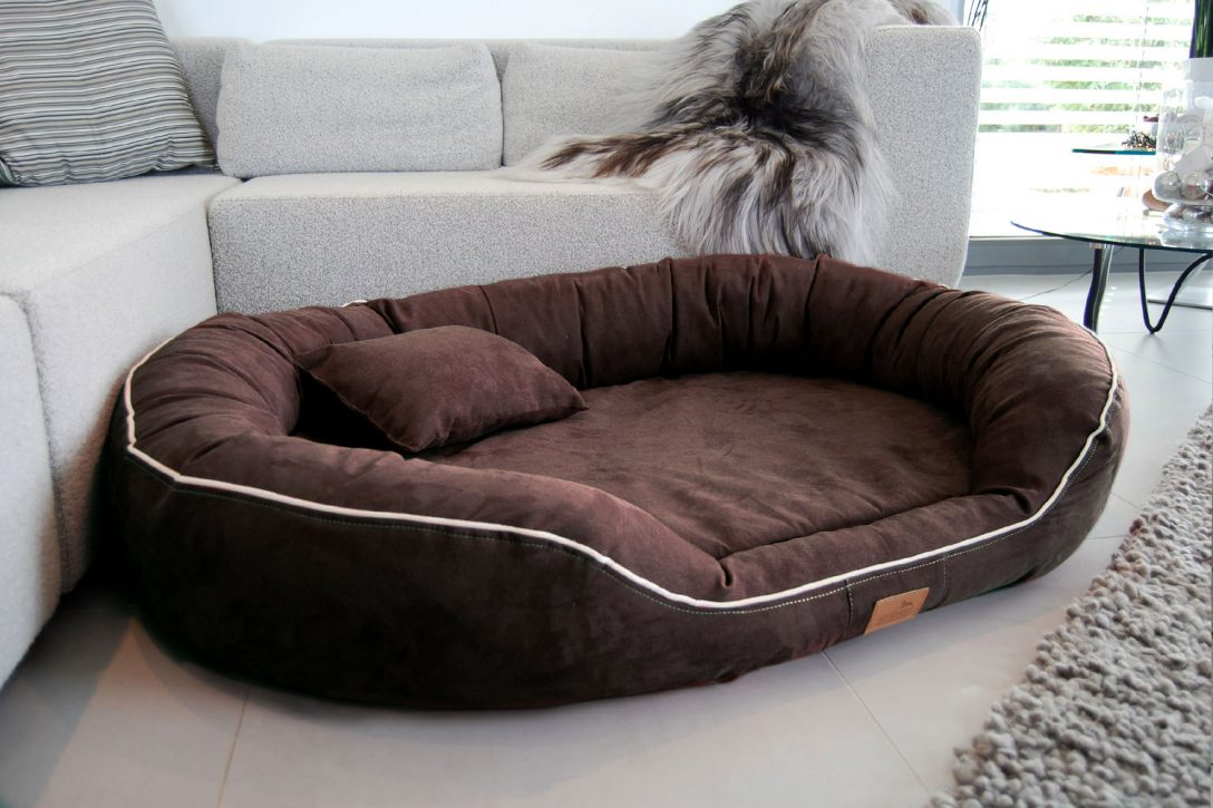 Full Size of Hundebett Flocke 90 Cm Test Zooplus Xxl Orthopdisches Marlon Visco Bett Liegehöhe 60 Regal 80 Hoch 50 Breit 40 Tiefe 30 20 Tief 25 Sofa Sitzhöhe 55 120 Wohnzimmer Hundebett Flocke 125 Cm