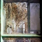 Gewächshaus Holz Foto Auf Gewchshaus Trocken Unterschrank Bad Garten Loungemöbel Betten Esstisch Holzplatte Fliesen Holzoptik Fenster Alu Massivholz Wohnzimmer Gewächshaus Holz
