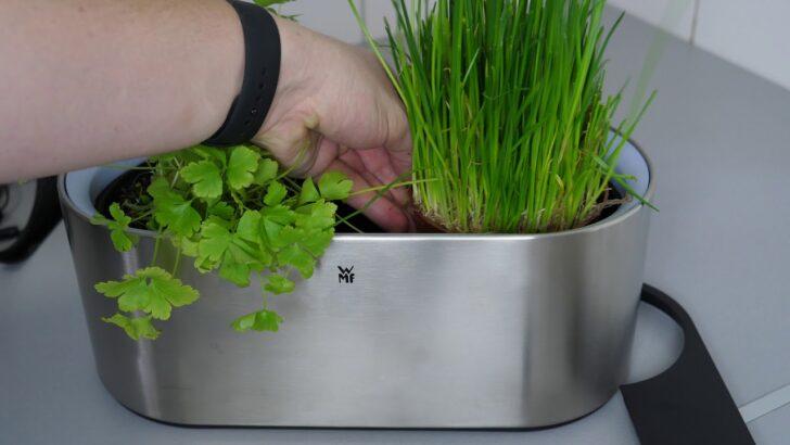 Medium Size of Küchenkräutergarten Ausprobiert Wmf Ambient Kruter Home Krutergarten Youtube Wohnzimmer Küchenkräutergarten