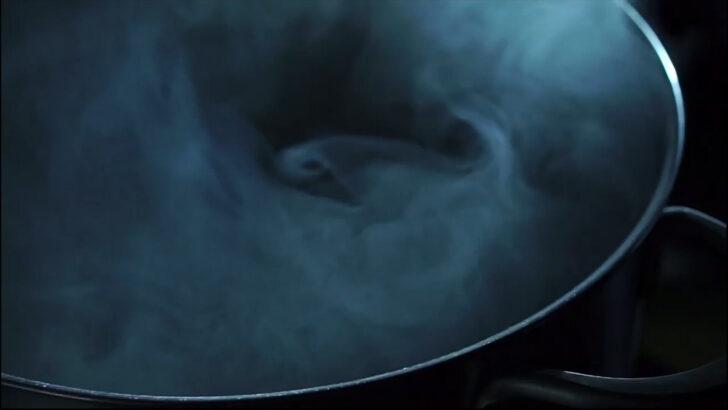 Medium Size of Lemans Topfauszug Fr Kchenschrnke Kessebhmer Wohnzimmer Küchenkarussell Blockiert