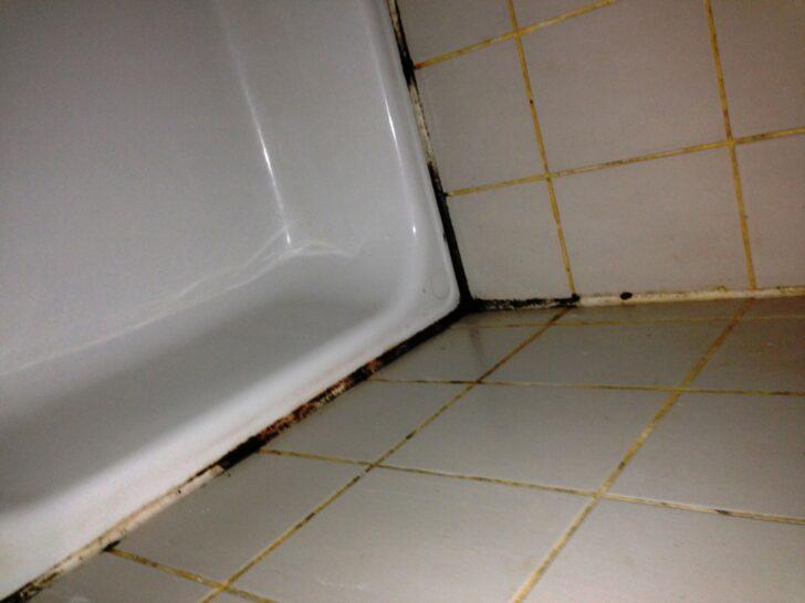 Medium Size of Schimmel Im Bad So Entfernen Sie Fenster Erneuern Kosten Wohnzimmer Fensterfugen Erneuern