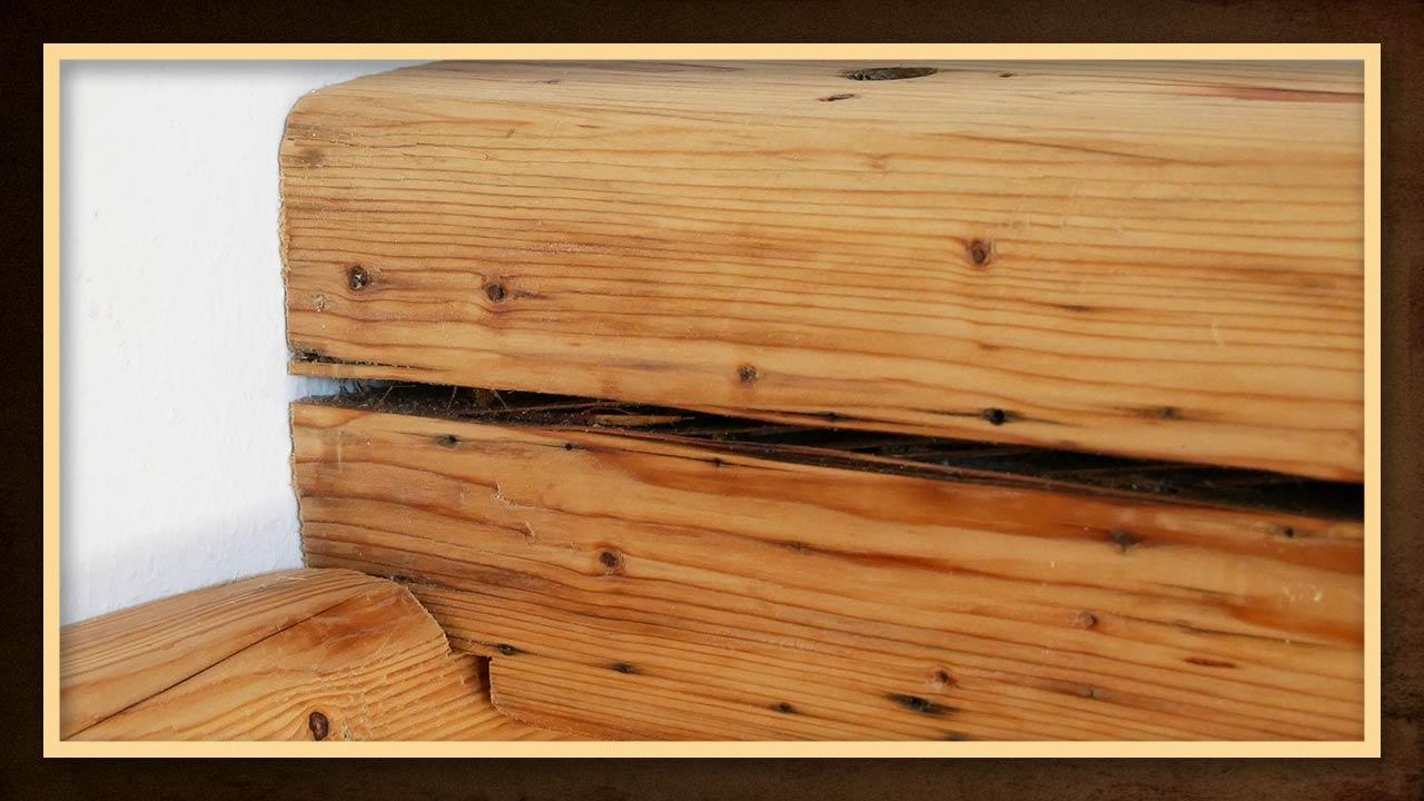 Full Size of Balkenbett Selber Bauen Anleitung 140x200 Selbst Bauhaus Bett Aus Balken Youtube Obi Made By Myself Bodengleiche Dusche Einbauen Fenster Nachträglich Wohnzimmer Balkenbett Bauen