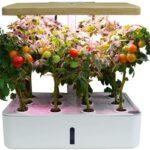 Küchenkräutergarten G J F Smart Einpflanzen Kit Wohnzimmer Küchenkräutergarten
