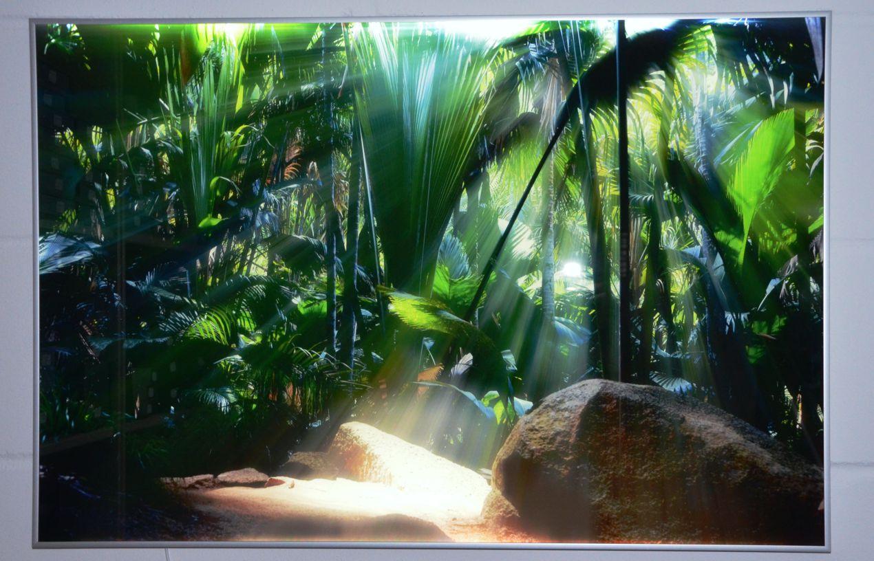 Full Size of Küchen Glasbilder Led Echtglasbild Jetzt Ihre Fotos Brillant Auf Echtglas Drucken Küche Bad Regal Wohnzimmer Küchen Glasbilder