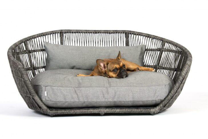 Medium Size of Hundebett Wolke 125 Hunde Bett Kunstleder Xxl Rund Holz Wohnzimmer Hundebett Wolke 125