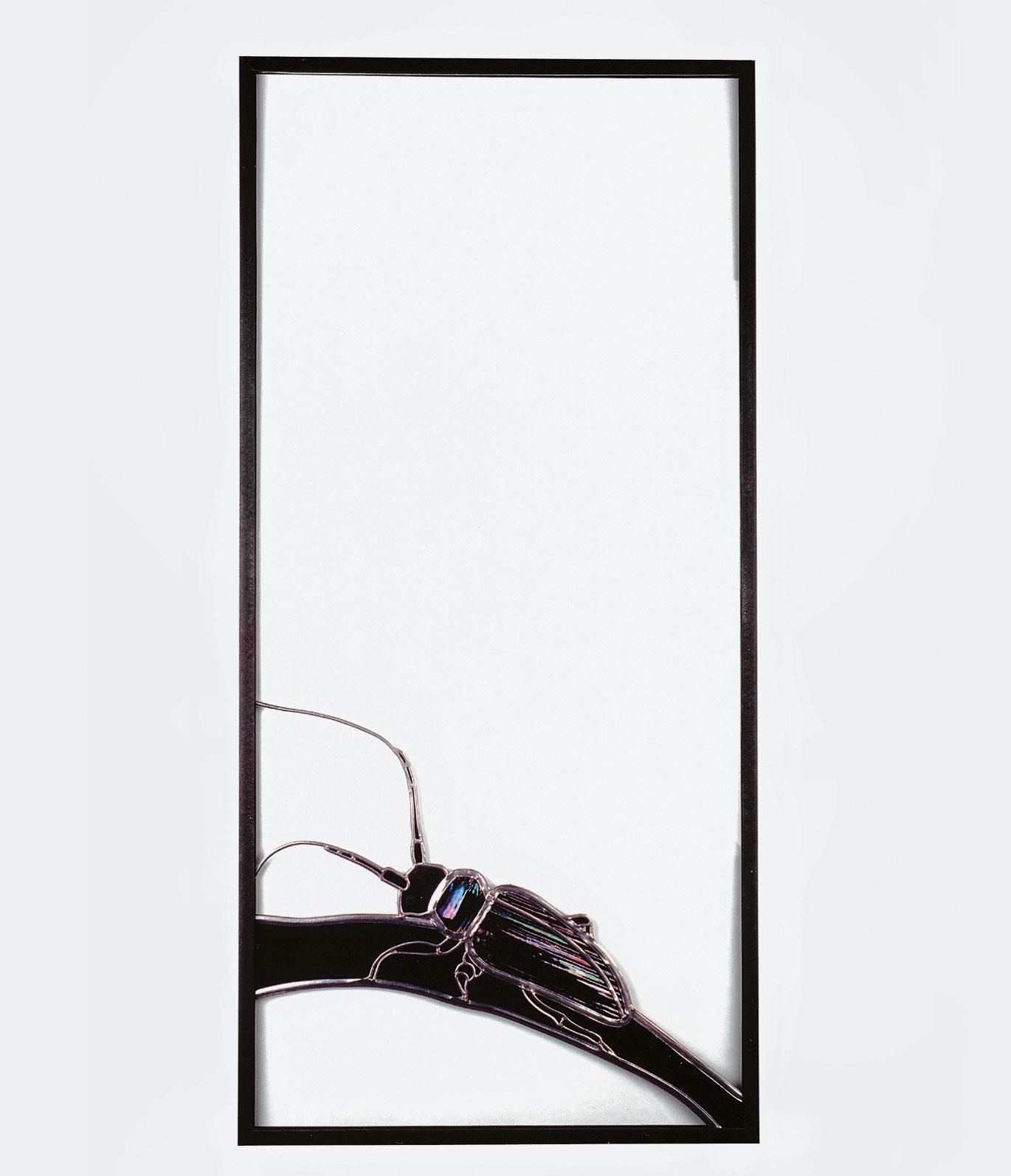 Full Size of Glasbild 120x50 Glasbilder Sandro Zimmermann Küche Bad Wohnzimmer Glasbild 120x50