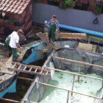 Gebrauchte Gfk Pools Wohnzimmer Gebrauchte Gfk Pools Kaufen Schwimmbecken Aus Polen Pool Gartenpool Einbauküche Küche Verkaufen Fenster Betten Regale