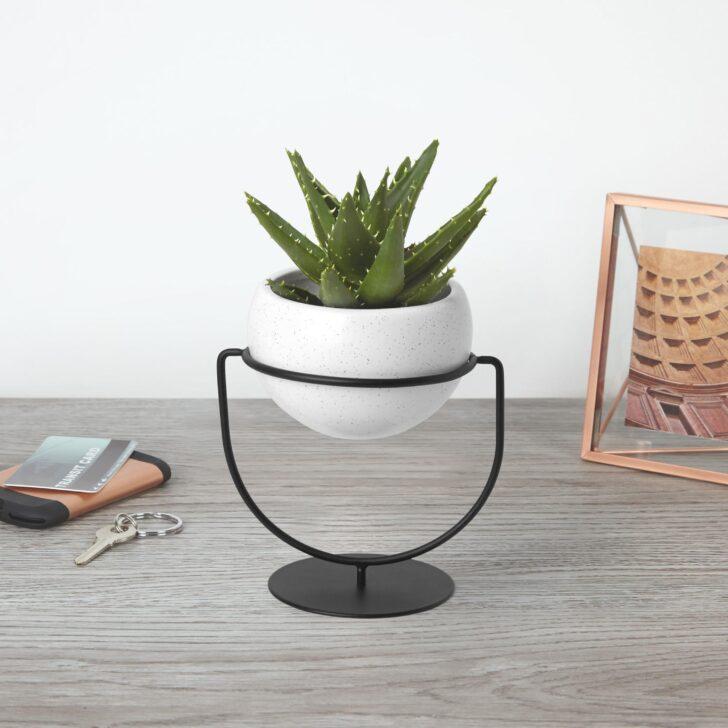 Medium Size of Kräutertopf Keramik Umbra Nesta Pflanzenhalter Küche Waschbecken Wohnzimmer Kräutertopf Keramik
