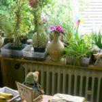 Küchenkräutergarten Das Tinchen On So Wohnzimmer Küchenkräutergarten