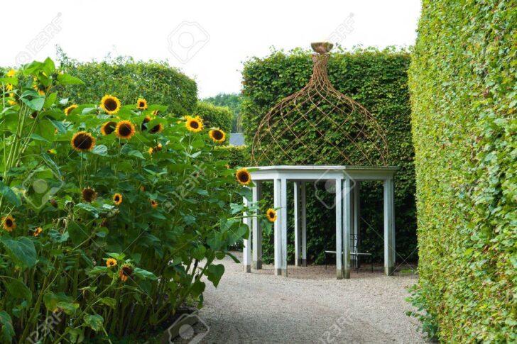 Medium Size of Pavillon Eisen Garten Wohnzimmer Pavillon Eisen