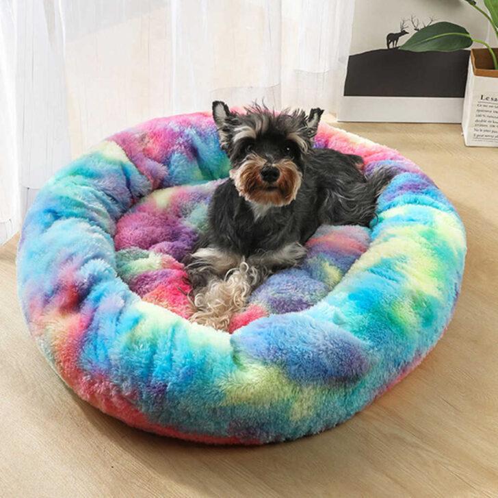 Medium Size of Hundebett Wolke Zooplus Bett Auto Flocke Kaufen Hund Kennel Pet Mat Erwrmung Wohnzimmer Hundebett Wolke Zooplus