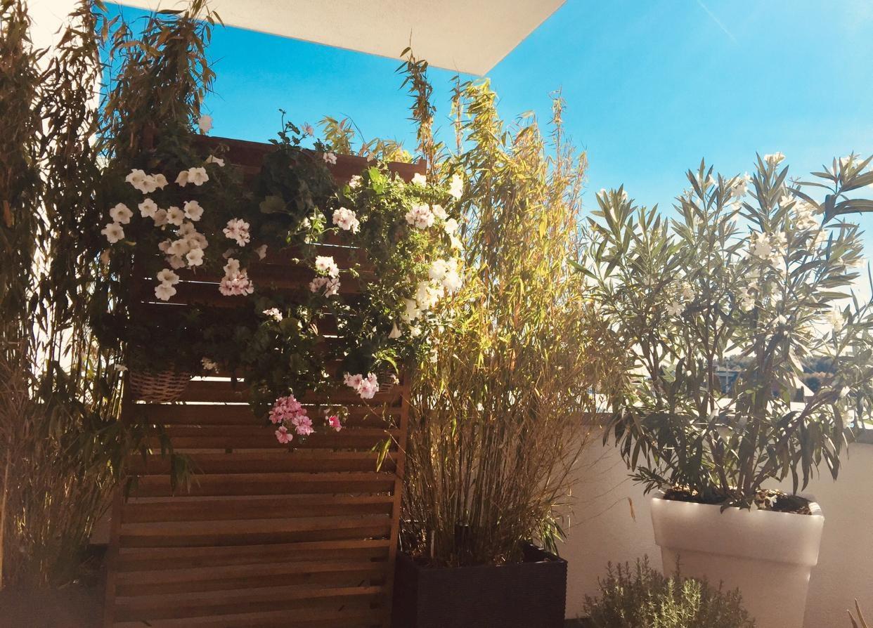 Full Size of Balkon Mit Sichtschutz Bilder Ideen Couch Garten Wpc Fenster Holz Für Sichtschutzfolie Bauhaus Im Sichtschutzfolien Einseitig Durchsichtig Wohnzimmer Bauhaus Sichtschutz Weide