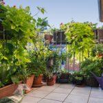 Paravent Bambus Balkon Der Ideale Sichtschutz Von Materialauswahl Bis Zur Garten Bett Wohnzimmer Paravent Bambus Balkon
