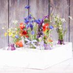 Wildblumen In Flaschen Kiste Kche Blumen Küche Landhausstil Schreinerküche Singleküche Waschbecken Sitzgruppe Gebrauchte Einbauküche Spüle Zusammenstellen Wohnzimmer Kisten Küche