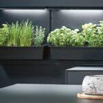 Küche Ikea Kosten Kräutertopf Sofa Mit Schlaffunktion Modulküche Betten 160x200 Bei Kaufen Miniküche Wohnzimmer Kräutertopf Ikea