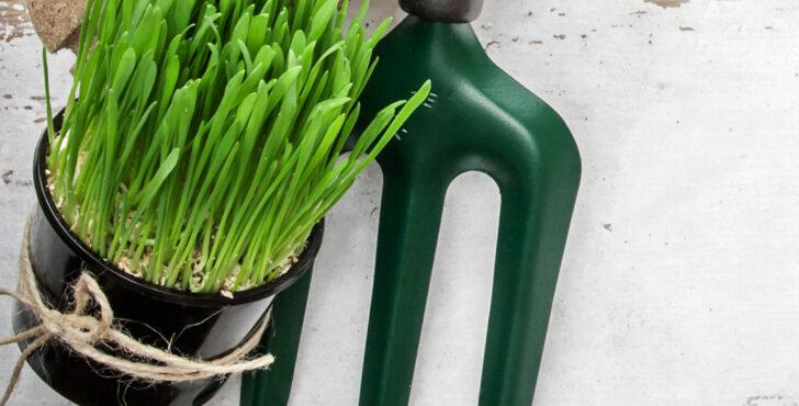 Medium Size of Aldi Gartenliege 2020 Relaxsessel Garten Wohnzimmer Aldi Gartenliege 2020