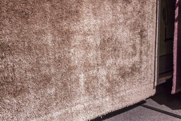 Medium Size of Teppich Joop Kaufen Grau Wohnzimmer Pattern New Curly Stein Soft Platin Mbel Brucker Schlafzimmer Bad Esstisch Badezimmer Teppiche Steinteppich Küche Betten Wohnzimmer Teppich Joop