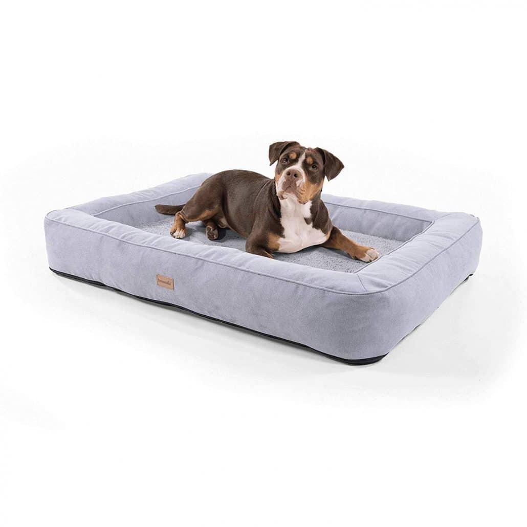 Full Size of Hundebett Wolke Zooplus Orthopdisches Besten Hundebetten Vorgestellt Wohnzimmer Hundebett Wolke Zooplus
