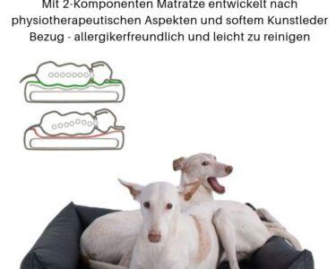 Hundebett Wolke 125 Wohnzimmer Hundebett Wolke 125 Flocke Zooplus 120 Cm Kaufen Bitiba 90 Xxl