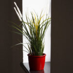 Blumentopf Keramik Pflanzgef 0 Waschbecken Küche Kräutertopf Wohnzimmer Kräutertopf Keramik
