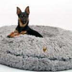 Hundebett Wolke Zooplus Flocke 120 Cm Kaufen Bitiba 125 90 Xxl Wohnzimmer Hundebett Wolke Zooplus
