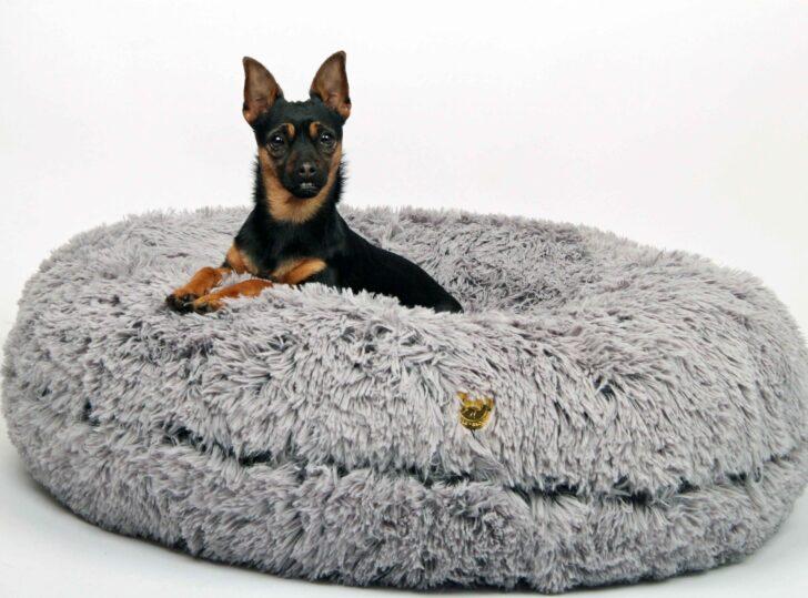 Medium Size of Hundebett Wolke Zooplus Flocke 120 Cm Kaufen Bitiba 125 90 Xxl Wohnzimmer Hundebett Wolke Zooplus