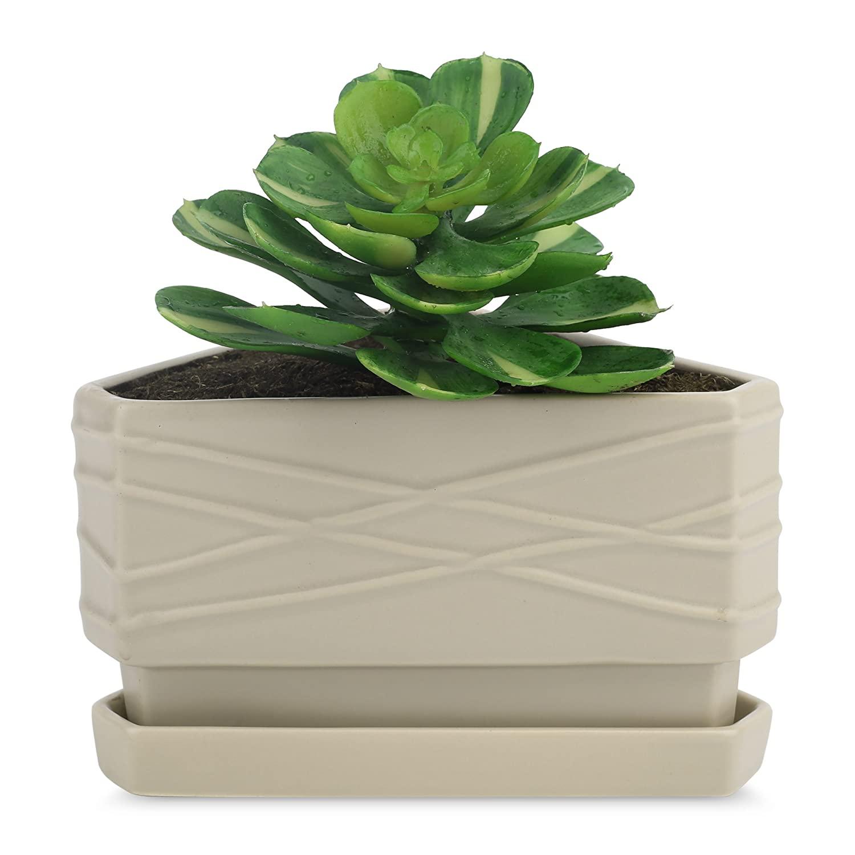 Full Size of Kräutertopf Keramik Purelifestyle Sukkulenten Topf Küche Waschbecken Wohnzimmer Kräutertopf Keramik
