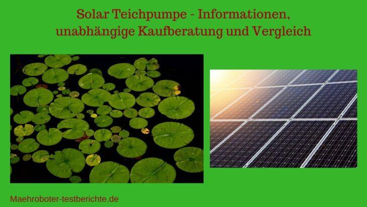 Medium Size of Solar Springbrunnen Bei Obi Garten Solarbrunnen Teich Pumpe Teichpumpe Test 2020 Besten 7 Teichpumpen Im Vergleich Regale Nobilia Küche Immobilien Bad Homburg Wohnzimmer Solar Springbrunnen Obi