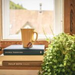 Fensterdekoration Küche Das Arrangement Und Dekoration Des Fensters In Der Kche Unterschränke Arbeitsplatte Sockelblende Vorhang Abfalleimer Mülltonne Wohnzimmer Fensterdekoration Küche