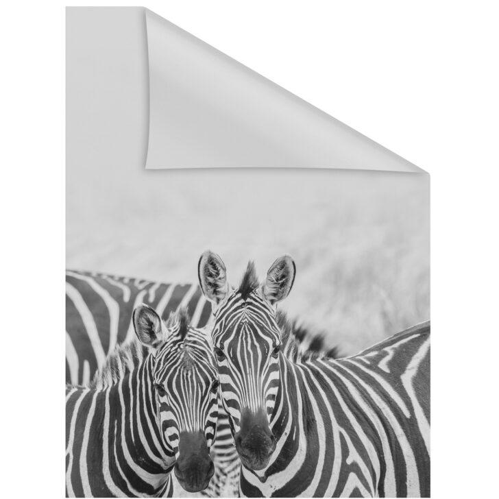 Medium Size of Fensterfolie Obi Lichtblick Selbstklebend Mit Sichtschutz Zebra Mobile Küche Nobilia Immobilien Bad Homburg Immobilienmakler Baden Einbauküche Fenster Regale Wohnzimmer Fensterfolie Obi