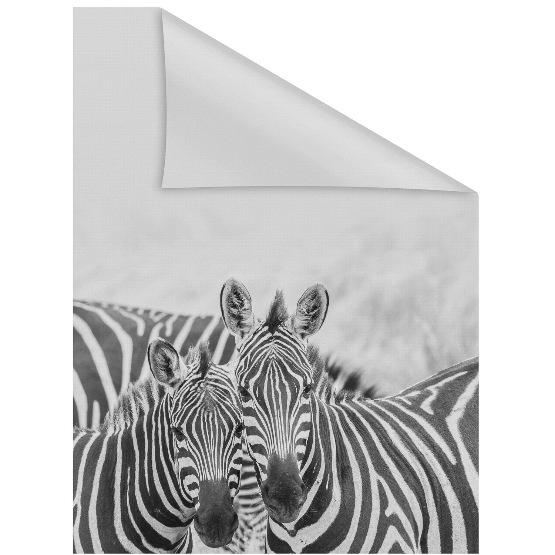 Full Size of Fensterfolie Obi Lichtblick Selbstklebend Mit Sichtschutz Zebra Mobile Küche Nobilia Immobilien Bad Homburg Immobilienmakler Baden Einbauküche Fenster Regale Wohnzimmer Fensterfolie Obi