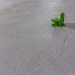 Küche Mint Betonboden Gespachtelt Fugenlos Wand Grau Kche Bad Badezimmer Inselküche Abverkauf Betonoptik Vorhänge Gardinen Für Deckenleuchten Granitplatten Wohnzimmer Küche Mint