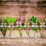 Küchenkräutergarten Pepp Deinen Sommer Mit Einem Krutergarten Auf Wohnzimmer Küchenkräutergarten