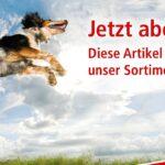 Hundebett Wolke Zooplus Zoo Co Onlineshop Tierfutter Wohnzimmer Hundebett Wolke Zooplus