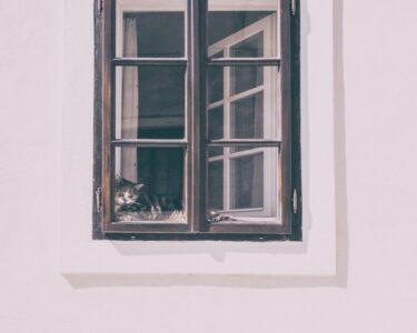 Gebrauchte Holzfenster Mit Sprossen Wohnzimmer Gebrauchte Holzfenster Mit Sprossen Fenster Sind Beliebt Und Modern Glasteilende Esstisch Stühlen Regal Schreibtisch Schlafzimmer Set Matratze Lattenrost