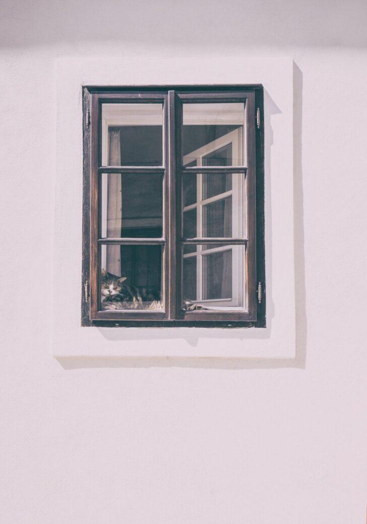 Medium Size of Gebrauchte Holzfenster Mit Sprossen Fenster Sind Beliebt Und Modern Glasteilende Esstisch Stühlen Regal Schreibtisch Schlafzimmer Set Matratze Lattenrost Wohnzimmer Gebrauchte Holzfenster Mit Sprossen