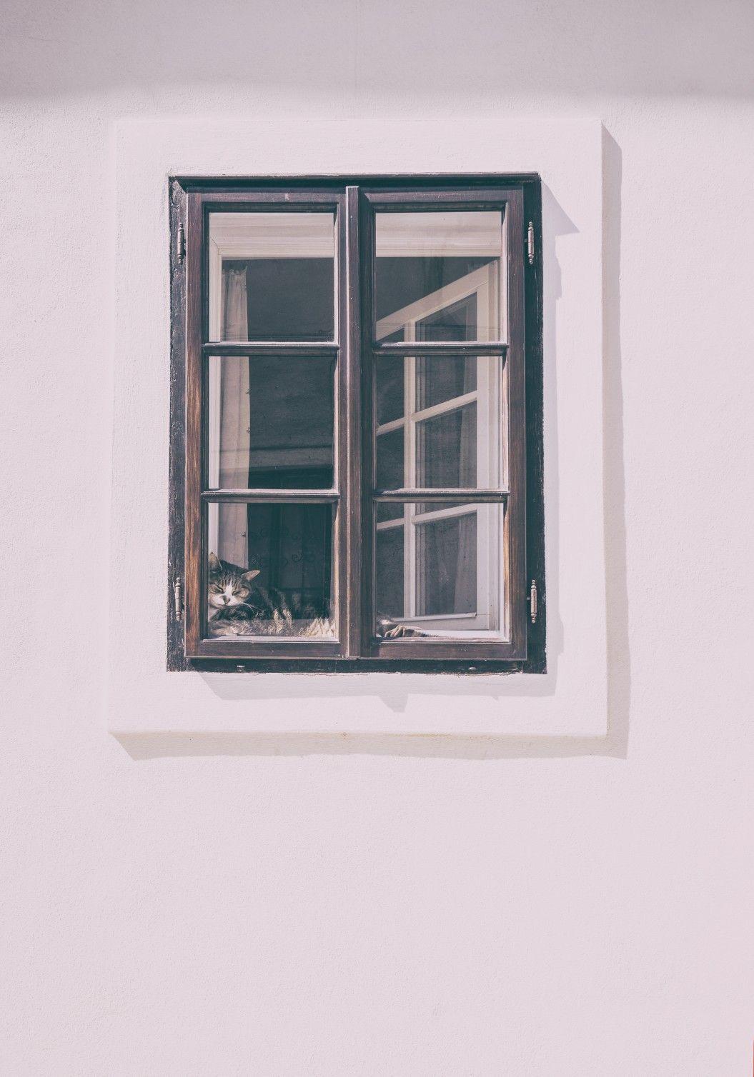 Full Size of Gebrauchte Holzfenster Mit Sprossen Fenster Sind Beliebt Und Modern Glasteilende Esstisch Stühlen Regal Schreibtisch Schlafzimmer Set Matratze Lattenrost Wohnzimmer Gebrauchte Holzfenster Mit Sprossen