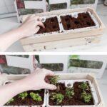 Küchenkräutergarten Wohnzimmer Küchenkräutergarten Kchenupdate Krutergarten In Meiner Kche Einpflanzen Und