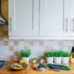 Kleine Kchen Franke Raumwert Ikea Miniküche Stengel Bad Renovieren Ideen Wohnzimmer Tapeten Mit Kühlschrank Wohnzimmer Miniküche Ideen