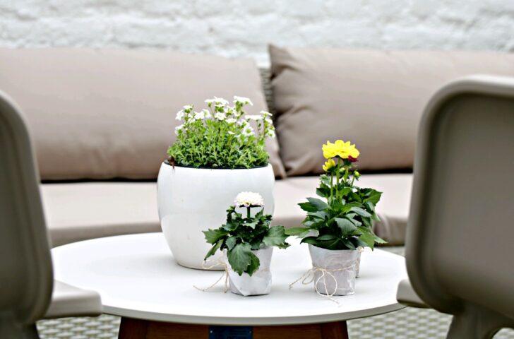 Medium Size of Komfort Gartensofa Tchibo 2 In 1 Eine Gemtliche Gartenlounge Im Hof Zum Wohlfhlen Und Entspannen Wohnzimmer Gartensofa Tchibo